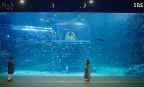 青伝水族館